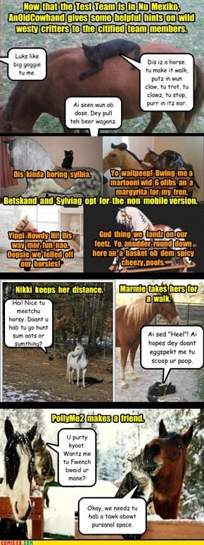 Poohdence - A Horse Iz a Horse Ob Korse
