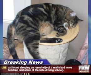 Breaking News - cat found sleeping on round object  ( really bad news headline crutisouie of the halo driving school).