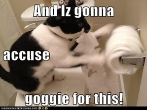 And Iz gonna  accuse goggie for this!