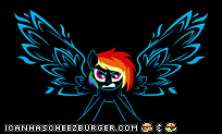 yea im a brony so what