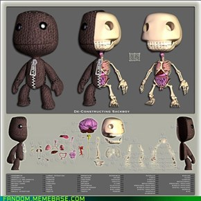 The Anatomy Of A Sackboy