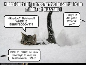 NIKKA-DUDS BIG 3 caught in blizzard in Santa Fe!