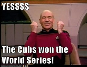 YESSSS  The Cubs won the World Series!