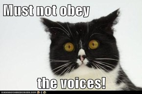 Must not obey  the voices!