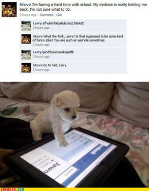 Why Not to Give Your Tablet to Your Pet