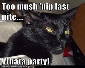 Too mush 'nip last nite....  Whata party!