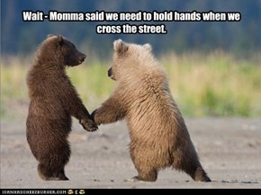 Wait - Momma said we need to hold hands when we cross the street.