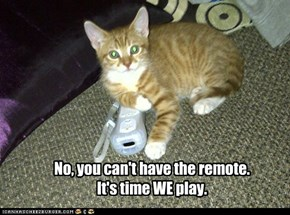 No, you can't have the remote.It's time WE play.