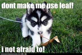 dont make me use leaf!  i not afraid to!