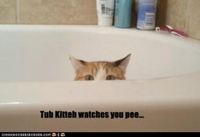 Tub Kitteh