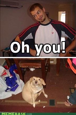 OH, DOG