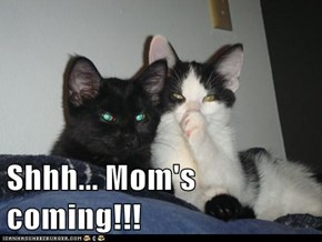 Shhh... Mom's coming!!!