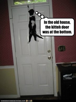 In the old house, the kitteh door was at the bottom.