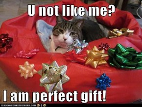 U not like me?  I am perfect gift!