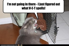 I'm not going in there - I just figured out what V-E-T spells!