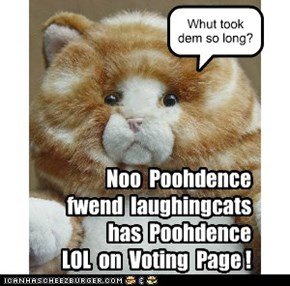 Poohdence LOL on Voting Page!