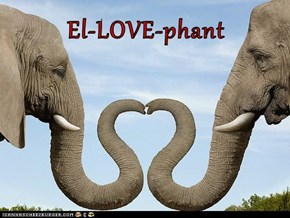 El-LOVE-phant
