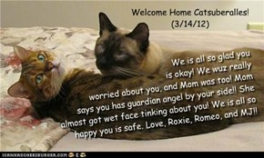 Welcome Home Catsuberalles! (3/14/12)
