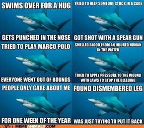 Animal Memes: Introducing Misunderstood Shark