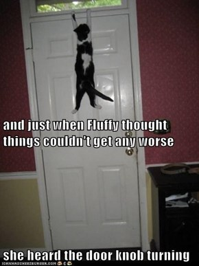 and just when Fluffy thought things couldn't get any worse she heard the door knob turning