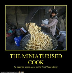 THE MINIATURIZED COOK