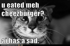 u eated meh cheezburger?  ai has a sad.