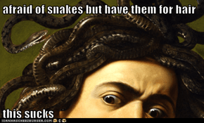 afraid of snakes but have them for hair  this sucks