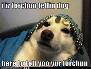 i iz forchun tellin dog  here to tell yoo yur forchun