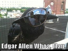 Animal Capshunz: Have You Ever Read Poe, Man? I Mean Really Read Poe?