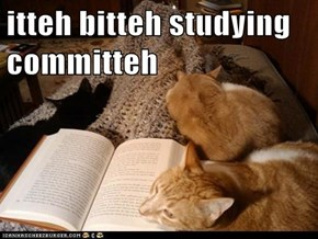 itteh bitteh studying committeh
