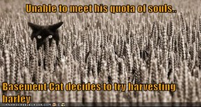Unable to meet his quota of souls..  Basement Cat decides to try harvesting barley