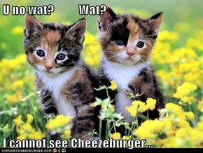U no wat?          Wat?  I cannot see Cheezeburger...