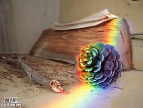 Rainbow Cone WIN