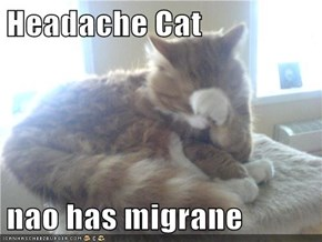 Headache Cat  nao has migrane
