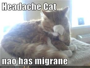 Headache Cat  nao has migrane