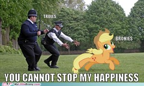 Can't Stop the Bronies
