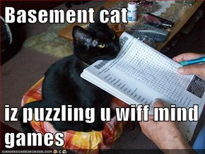 Basement cat  iz puzzling u wiff mind games
