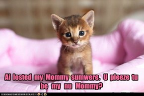 Ai  losted  my  Mommy  sumwere.   U  pleeze  tu be   my   nu   Mommy?