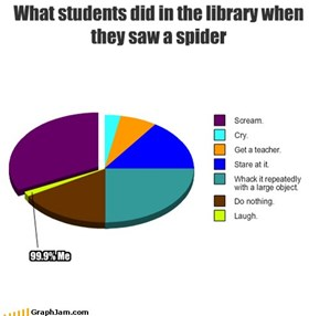 What students did in the library when they saw a spider