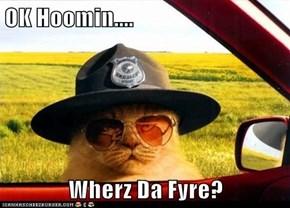 OK Hoomin....  Wherz Da Fyre?