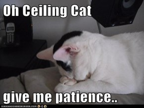 Oh Ceiling Cat  give me patience..
