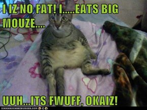I IZ NO FAT! I.....EATS BIG MOUZE....  UUH...ITS FWUFF, OKAIZ!