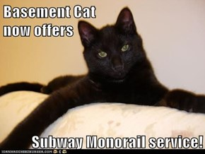 Basement Cat                               now offers  Subway Monorail service!