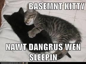 BASEMNT KITTY  NAWT DANGRUS WEN SLEEPIN