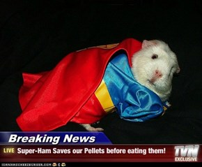Breaking News - Super-Ham Saves our Pellets before eating them!