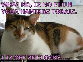 WHA? NO, IZ NO ETTIN YOUR HAMTERZ TODAIZ.  I IZ OFF ZE CLOCKS.....