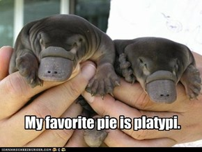 Squeee for dessert!