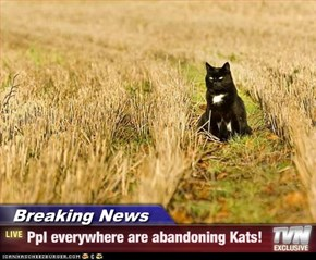 Breaking News - Ppl everywhere are abandoning Kats!