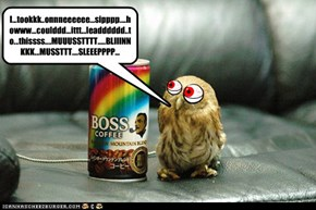NEVER LET YOUR OWL DRINK COFFEE!!!