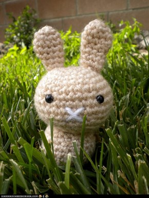 Amigurumi on the Prowl